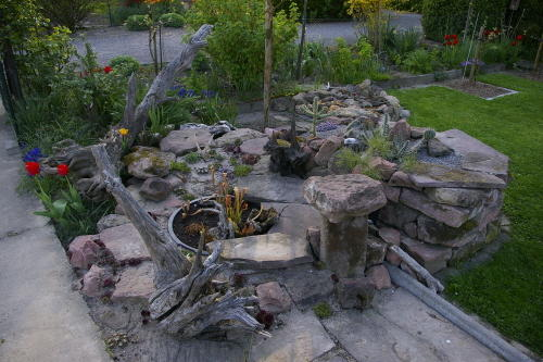 Pflegeleichte Hecke Garten :  Wurzenturm wäre doch mal ein Vorschlag für eine pflegeleichte Hecke