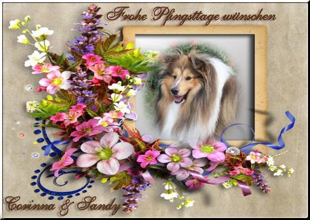 An den Beitrag angehängtes Bild: http://s1.up.picr.de/4401857.jpg